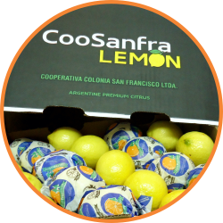 limon-coosanfra2
