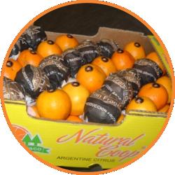 mandarina-naturalcoop